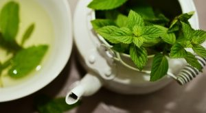menthe contre nausees grossesse